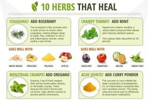 Herbs-That-Heal