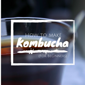 How to Make (6)